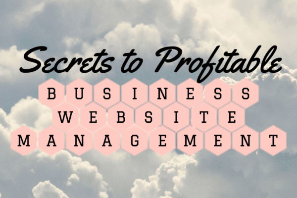 Cover for Secrets to Profitable Business Website Management